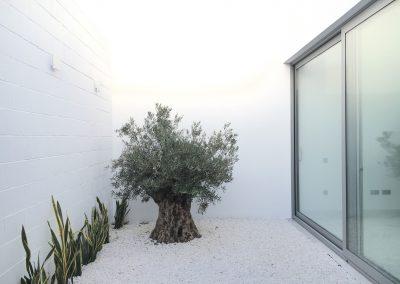 Patio interior arquitectura andalucia